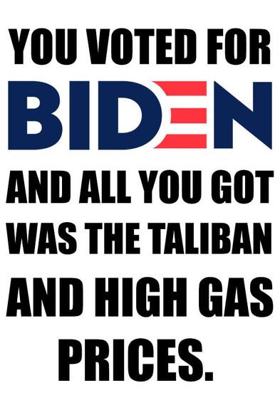 """You Voted For Biden 2""""x3"""" Sticker"""