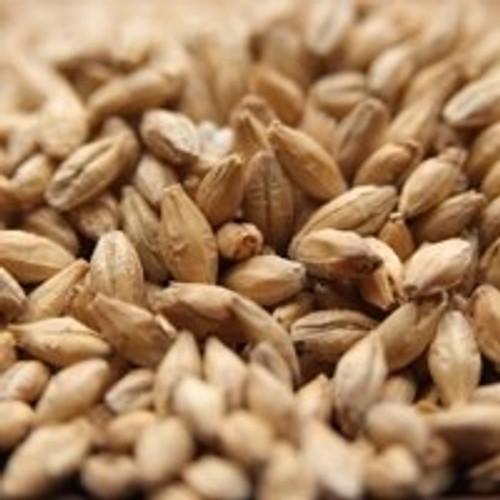 BestMalz Pilsner Malt, BestMalz Pilsen Malt, Malted Barley
