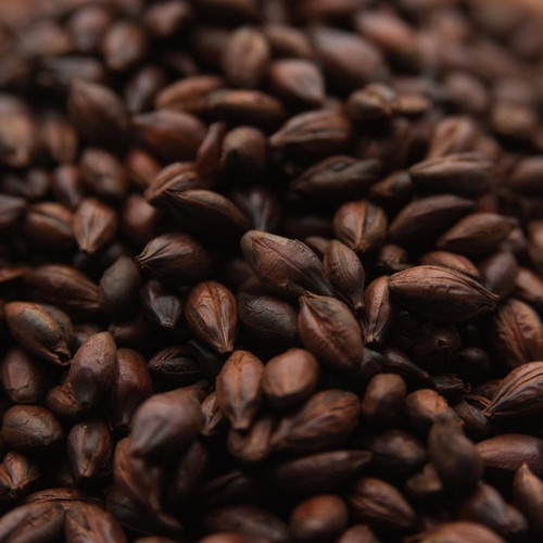 Weyermann Roasted Barley, Roasted Barley, Weyermann Brewing Malt