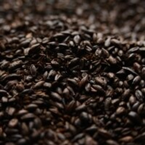 Briess Roasted Black Barley, Roasted Barley Malt, 500 Lovibond