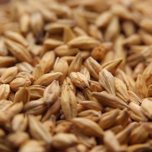 Weyermann Acidulated Malt, Acidulated Malt, Weyermann Brewing Malt