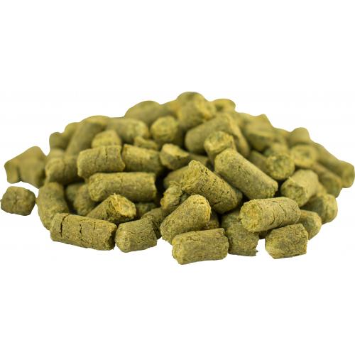 Challenger Hops (Pellets) 1 oz, Yeast, Brewing Malt