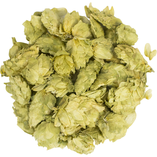 Citra Hops (Whole Cone) -2oz., Yeast, Brewing Malt