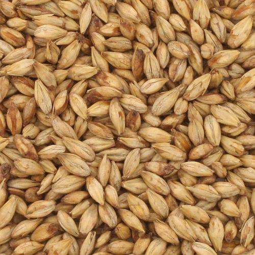 BestMalz Beechwood Smoked Malt, BestMalz Barley Malt, Malted Barley