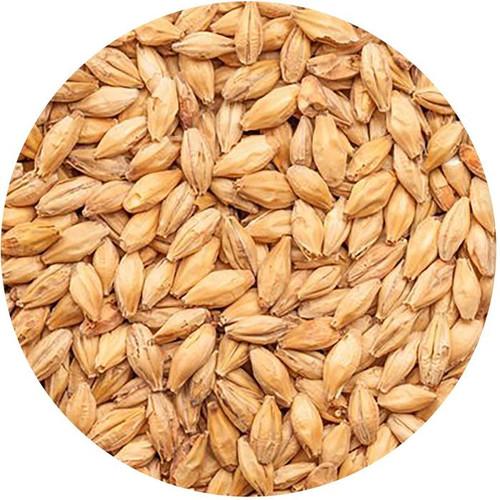 BestMalz Red X Malt, BestMalz Barley Malt, Malted Barley