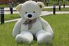 "Joyfay® 78"" (6.5 ft) Giant Teddy Bear White"