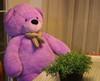 "Joyfay® 78"" Purple Giant Teddy Bear-6.5 Ft Stuffed Toy, Thick Plush Coat"