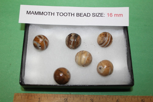 Mammoth Tooth Bead for Jewelry 16mm