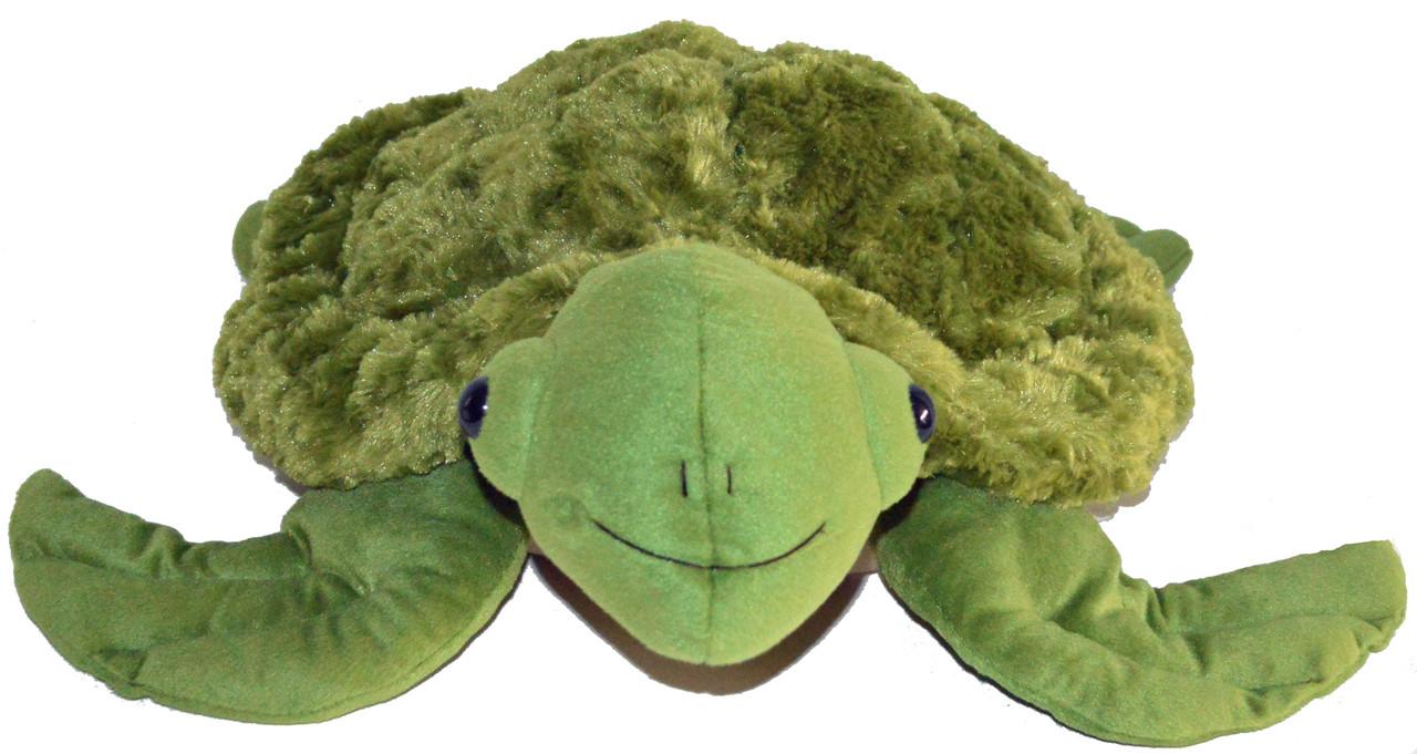 SID Sensory Intensive Development The Sea Turtle