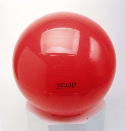 22 inch Balance and Therapy Ball