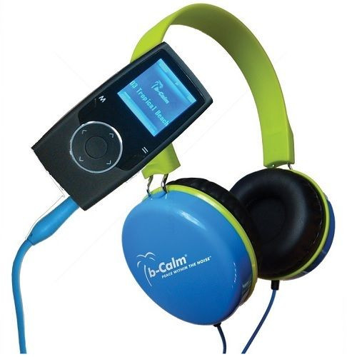 B Calm Headphones