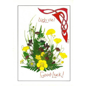 Dorcas Costain-Blann Good Luck Greetings Card