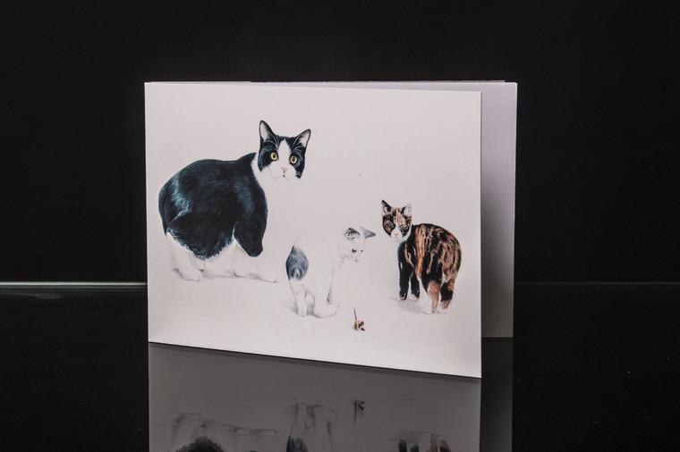 Cat Notepad A5