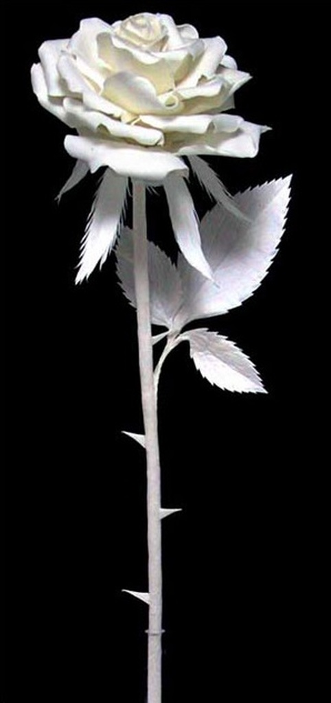 Rose with Ladybug | Patty Eckman | cast paper sculpture