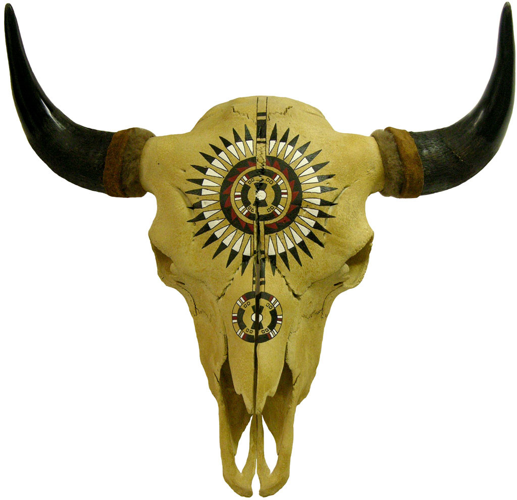 Hand Painted Buffalo Skull w. Black War Bonnet  Design