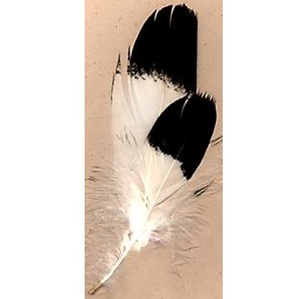 Imitation Eagle Body Feathers