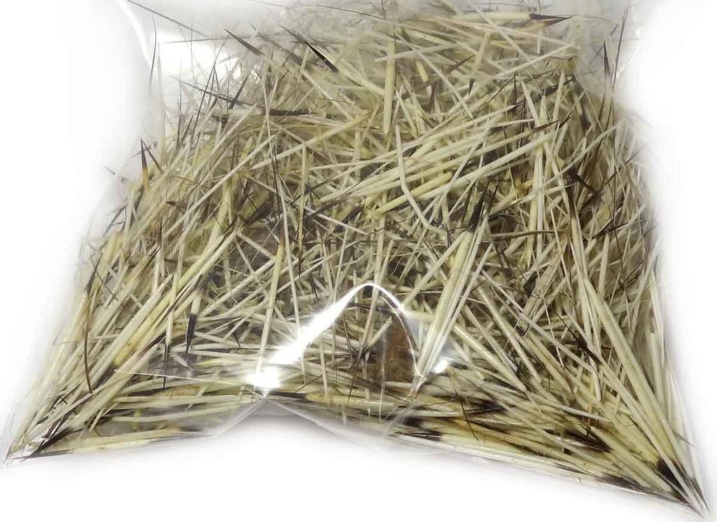 Natural Porcupine Quills