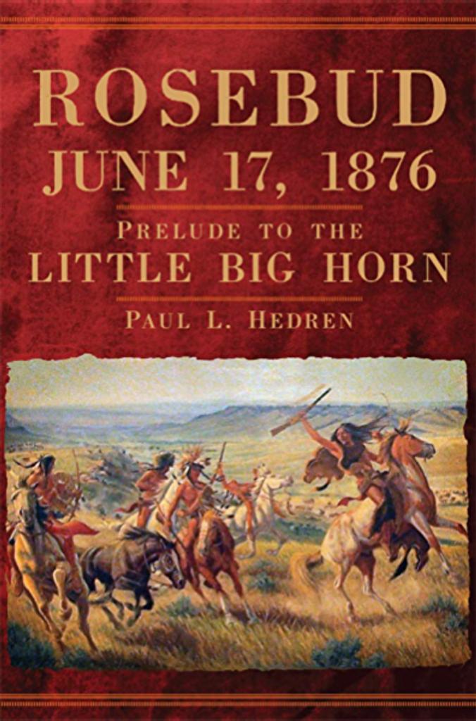 rosebud june 17, 1876 book cover