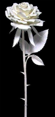 Rose with Ladybug   Patty Eckman   cast paper sculpture