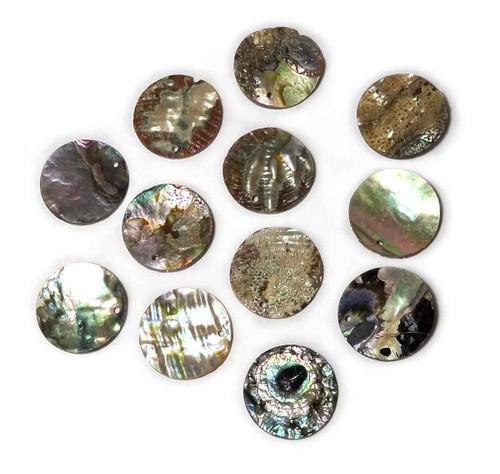 1 inch 1-Hole abalone shell