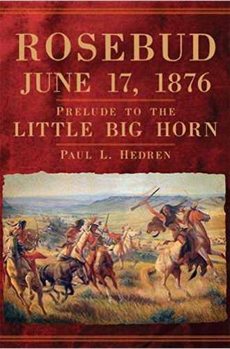rosebud june 17, 1876 book cover