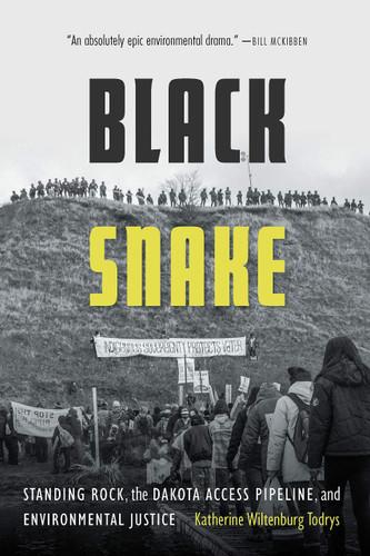 black snake cover