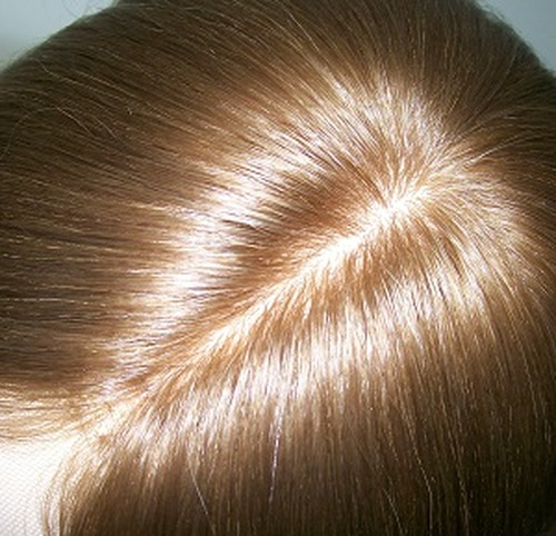 Russian Hair Topper Silk Top