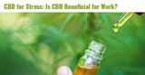 CBD for Stress: Is CBD Beneficial for Work?