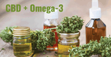 Benefits of CBD taken with Omega 3
