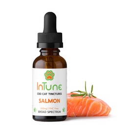 InTune 250mg Salmon CBD Cat Tincture 30ml