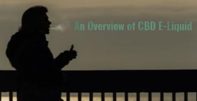 An Overview of CBD E-Liquid