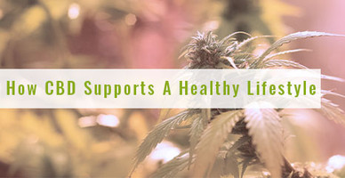 How CBD Supports A Healthy Lifestyle