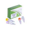 igScript™ First Strand cDNA Synthesis Kit