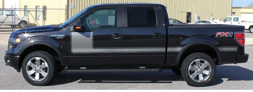 Ford F150 Graphics 15 FORCE 1 3M 2009-2016 2017 2018 2019 2020
