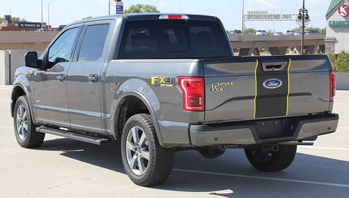 2017 Ford F150 Graphics BORDELINE 2015-2018 2019 2020
