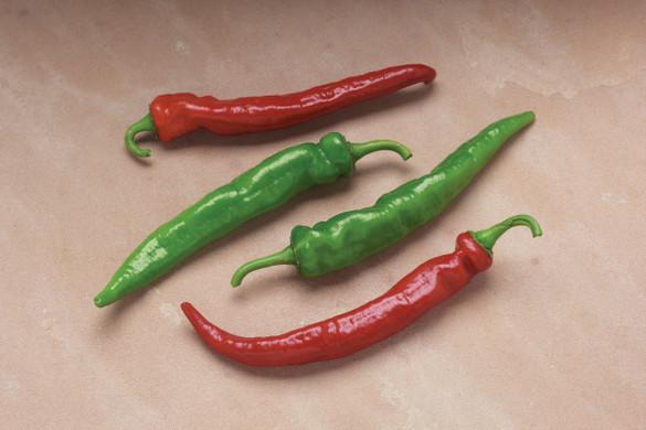 Pepper 'Arapaho'