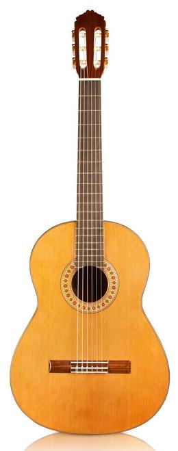 Cordoba Rodriguez Guitar