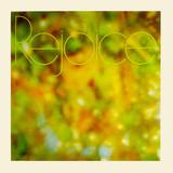 Rejoice (Download)