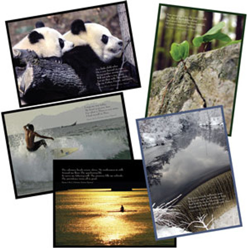 Greeting Card – Monitor Photos (10-pack)