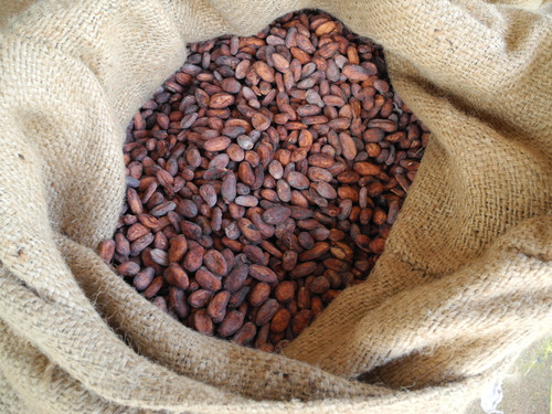 What's so special about Australian grown chocolate?