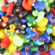 2-inch Rubber Ducks 30percent Licensed Mix 500 pcs