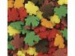 Fall Leaf Shape Bulk Sprinkles 5 lbs