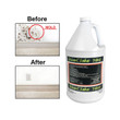 Biocide 100 Disinfectant - Gallon