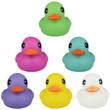 Plain Rubber Ducks 6-inch Generic 12 pcs