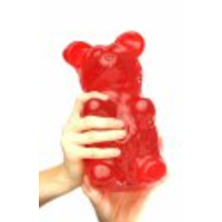 World's Largest Gummy Bears
