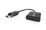 DisplayPort to HDMI Adapters
