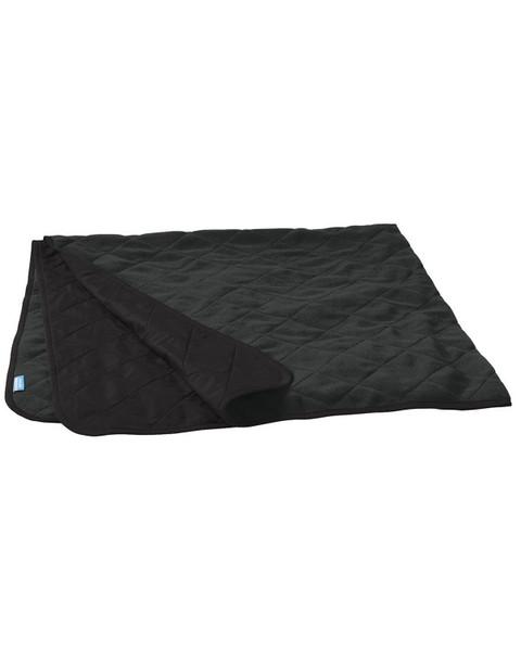 DRHS Soccer Picnic Blanket