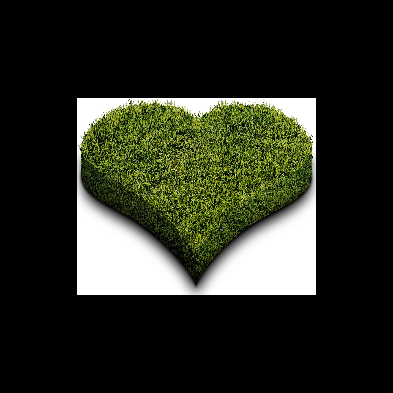 heart-grass-transparent.png
