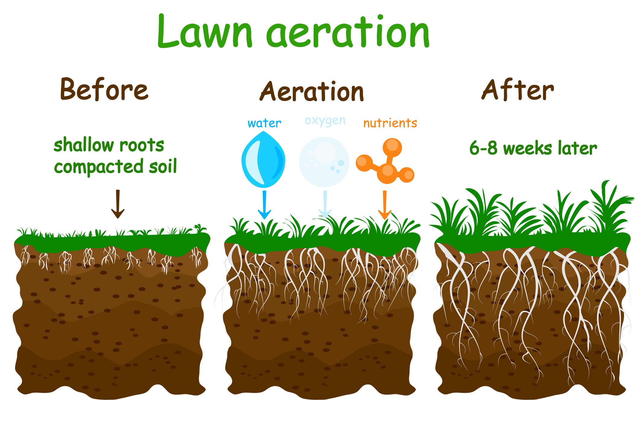lawn-aeration.jpg