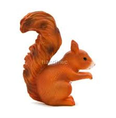 Mojo - Squirrel Standing